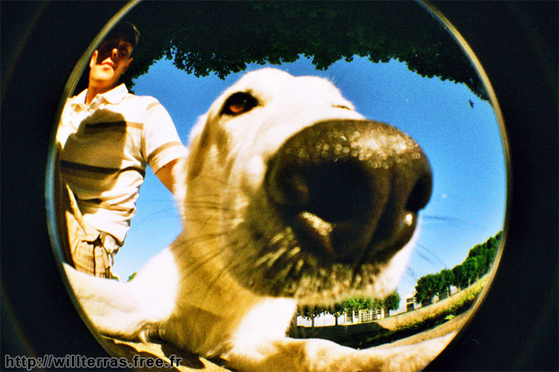 lomo-fish-eye.jpg